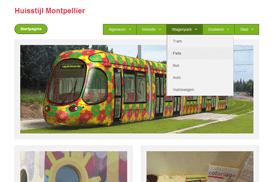 Website over de huisstijl van Montpellier